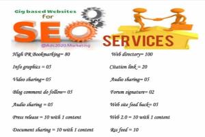Portfolio for I will do On Page/ Off page Seo