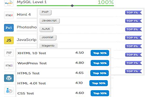 Portfolio for Web development expert