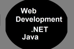 Portfolio for Software Engineer
