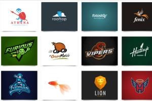 Portfolio for Logo Design Expert