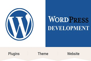 Portfolio for I Will Do Wordpress website