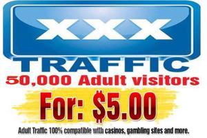 Portfolio for We will send 50,000 adult visitors