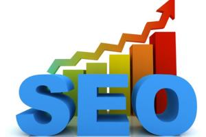 Portfolio for I provide the best seo services