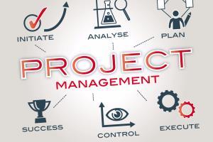 Portfolio for Start Up Management