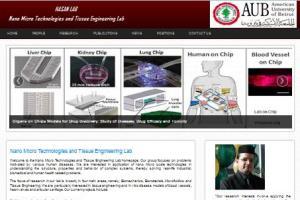 Portfolio for Web and Software Developer