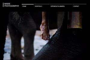 Portfolio for Professional Photo Editor