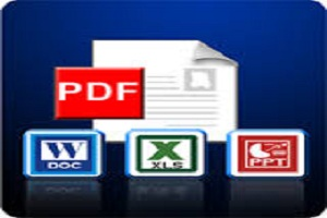 Portfolio for PDF Conversion