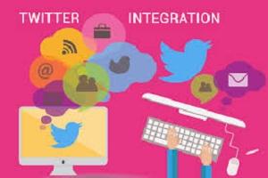 Portfolio for TWITTER PROFILE MANAGEMENT