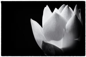 Portfolio for Photo Editing and Retouching