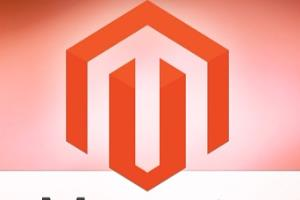 Portfolio for Magento Store Development, Extensions