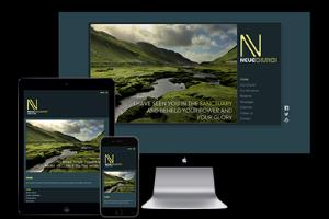 Portfolio for Website Graphic Designer with 20 yrs exp