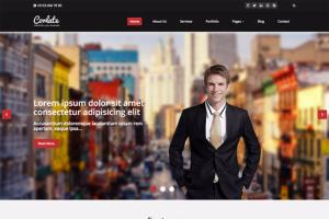 Portfolio for WordPress Developer