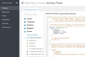 Portfolio for Shopify Development and Store Design