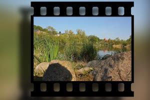 Portfolio for Video Editing Services