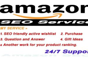Portfolio for Amazon Product Ranking