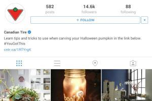 Portfolio for Instagram marketing and management