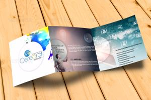 Portfolio for Professional Brochures