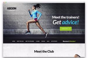 Portfolio for Wordpress Website Designing