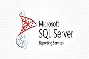 Portfolio for REPORT DEVELOPMENT- SQL SERVER REPORTS