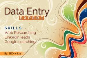 Portfolio for I am Muhammad ismail..Data Entry expert