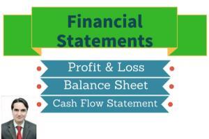Portfolio for Profit & Loss,Balance Sheet, Cash Flow