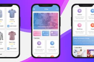 Portfolio for Hybrid App Design / Dev.