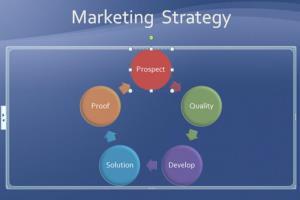 Portfolio for MS PowerPoint Presentation
