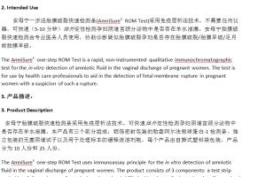 Portfolio for Website Translation