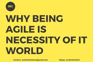 Portfolio for Agile Project Management