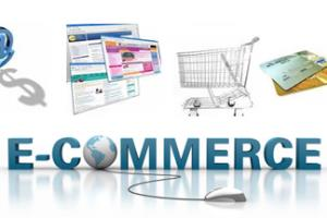 Portfolio for E-Commerce Portals