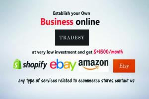 Portfolio for eBay web services