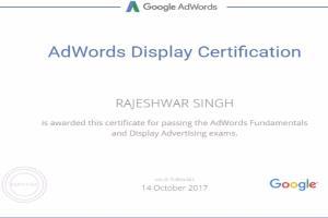 Portfolio for Certified Google adwords   PPC
