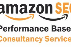 Portfolio for Amazon SEO