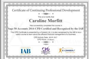 Portfolio for Basic Accounting Service
