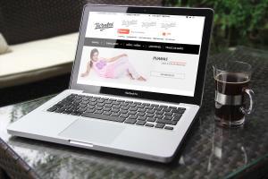 Portfolio for I will design and build a smart website.
