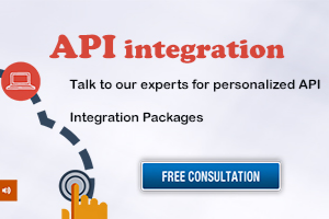 API Integration in Noida, IN by Adequate Infosoft