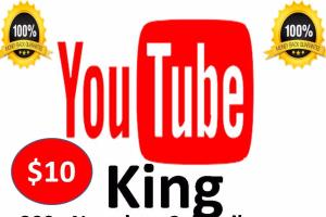 Portfolio for Seo For Your Channel Or Link  1000 subs