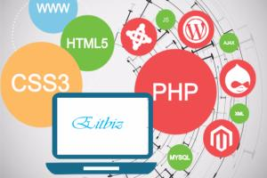 Portfolio for PHP based development services