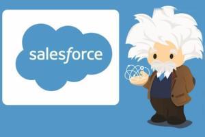 Portfolio for Salesforce Development