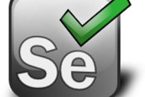Portfolio for Can write selenium scripts