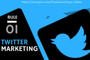 Portfolio for I Will Promote And Manage Twitter Market
