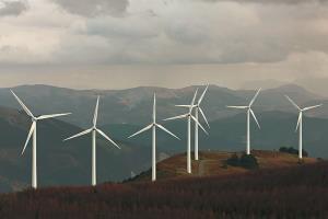 Portfolio for Energy Consultant