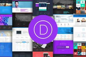 Portfolio for Build wordpress website using Divi theme