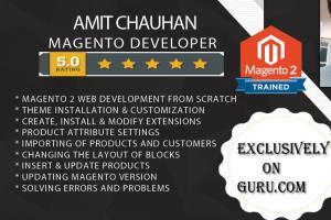 Portfolio for I will do magento1 and magento2 site
