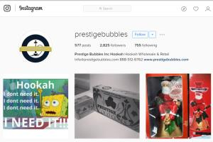 Portfolio for Instagram Marketing