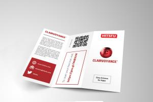 Portfolio for Trifold Brochure Design