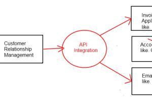 Portfolio for API Integration