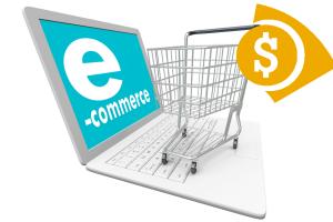 Portfolio for Ecommerce Services