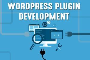 Portfolio for Wordpress Plugin Development