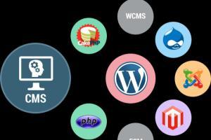Portfolio for PHP Based CMS | CRM | APPs Development